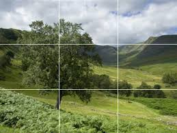 The rule of thirds places the tree & distance at the intersections of the frame.